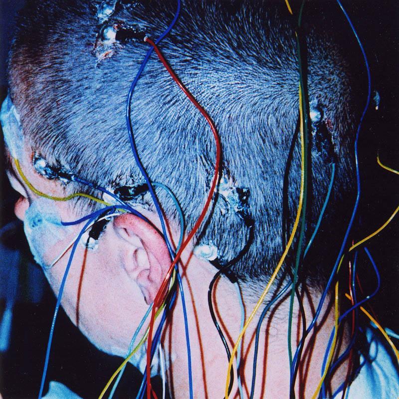 how to read eeg brain waves