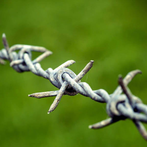 Celebrating the invention of Barbed Wire – Joseph Gidden Barbed Wire Diagram