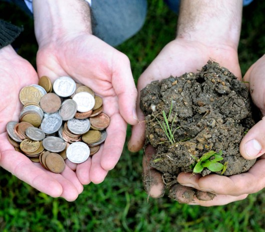 Soil - a very undervalued resource.(© All Rights Reserved)