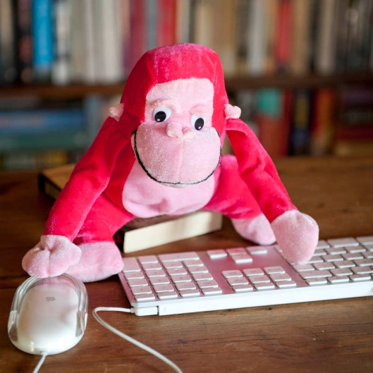 The infinite monkey theorem, as applied to programming. (© All Rights Reserved)