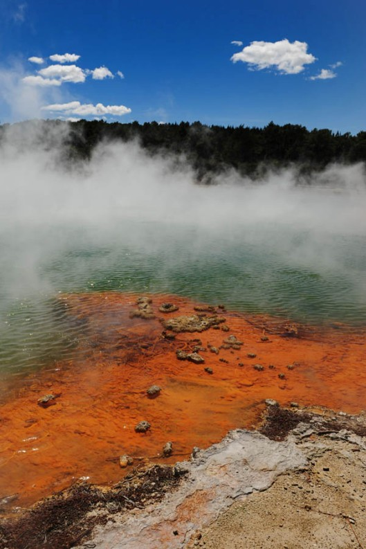 In my minds eye I've always imagined primordial soup as a rather ominous-looking pond of bubbling and steaming chemical liquid, very much like the thermal geysers at Rotorua, New Zealand. (© All Rights Reserved)
