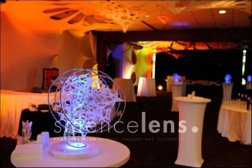 CSIR Conference 2007