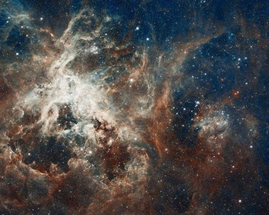 NASA image release date April 17, 2012 This region resembles a coral reef, but the gas has been eroded by the hefty stars in R136, situated above it. Cloaked in gas at the top of this rugged, gaseous terrain are nascent stars that cannot be seen. Dense columns of gas, several light-years long, protrude from the undulating landscape. These gaseous columns are incubators for developing stars. By NASA Goddard Photo and Video (Space Flickr photograph. Some Rights Reserved.) [CC-BY-2.0 (http://creativecommons.org/licenses/by/2.0)], via Wikimedia Commons