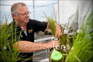 AgResearch Grasslands Research Centre