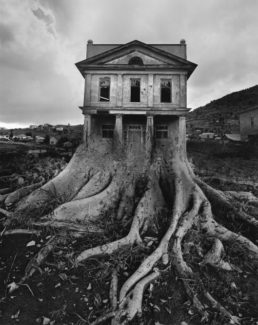Untitled (Tree House), by Jerry Uelsmann, 1982. It is quite unbelievable to think that Uelsmann's photo montages were done using film negatives in the darkroom, without any modern digital processing.